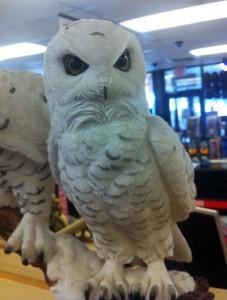 truck stop owl