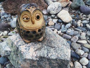 odd-owl
